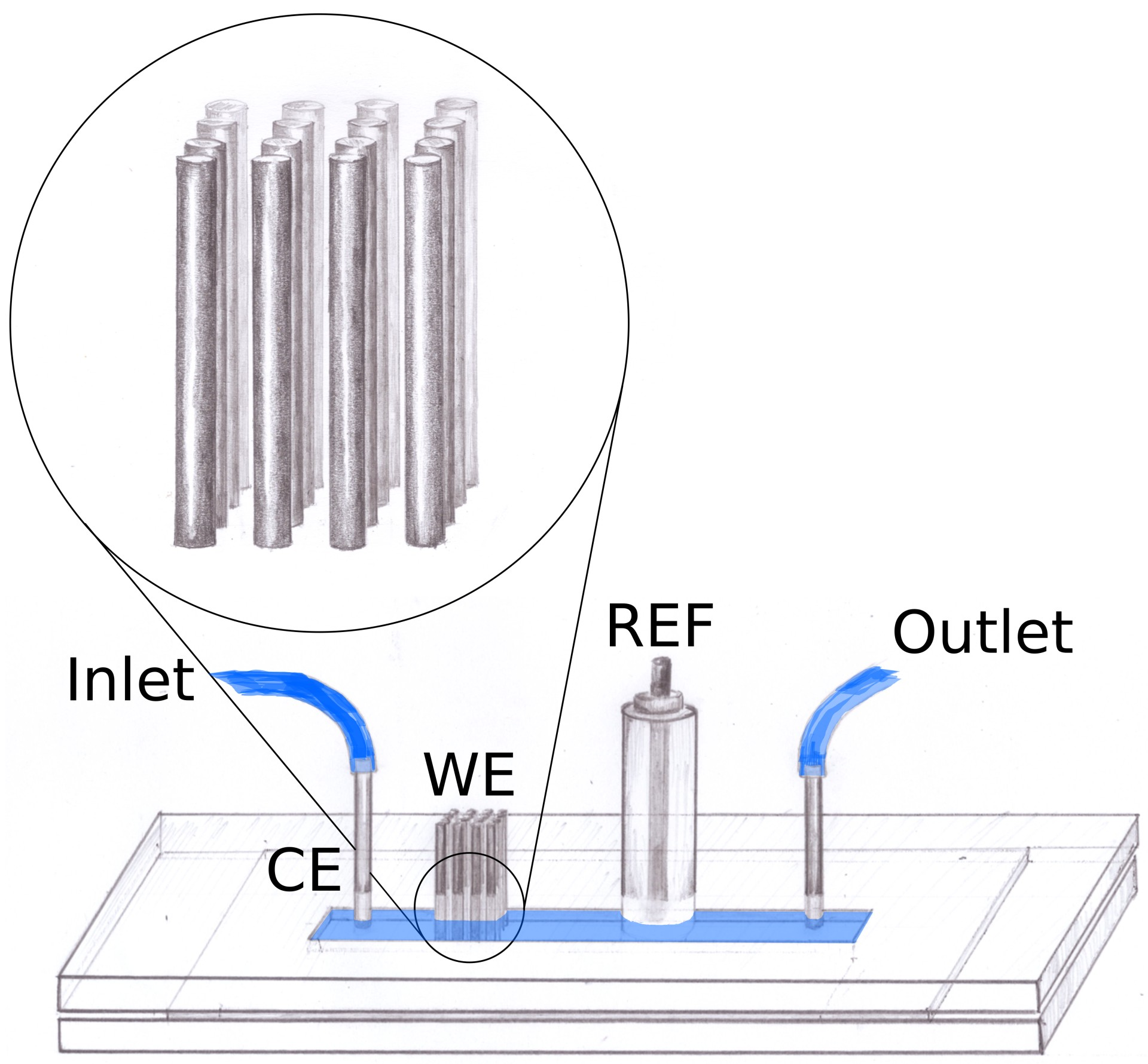charge transfer processes in hydrodynamic systems research group